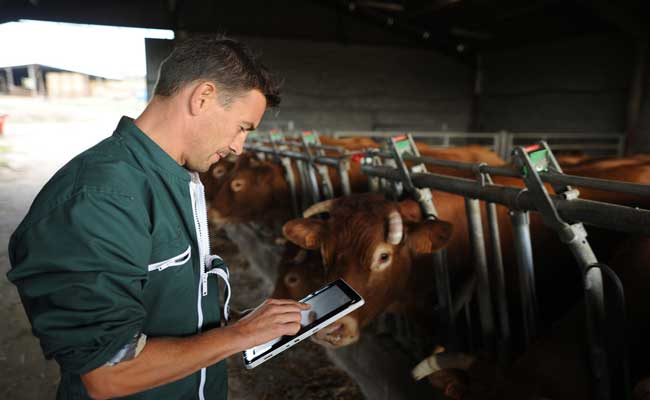 Photo de Agriculture online: l'e-commerce, un levier de ventes puissant (3/3)