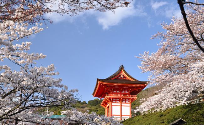 Photo de Tokyo – Des nouvelles du livre Les dessous du Web