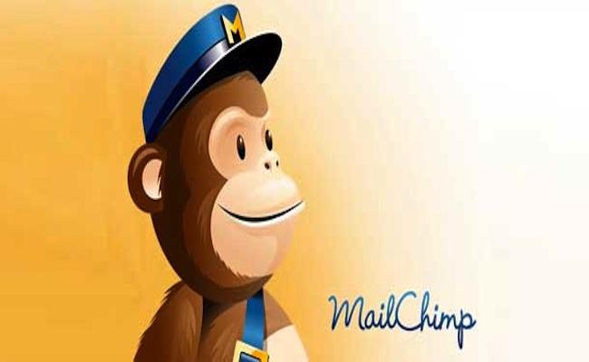 Photo de MailChimp : création et envoi de newsletters