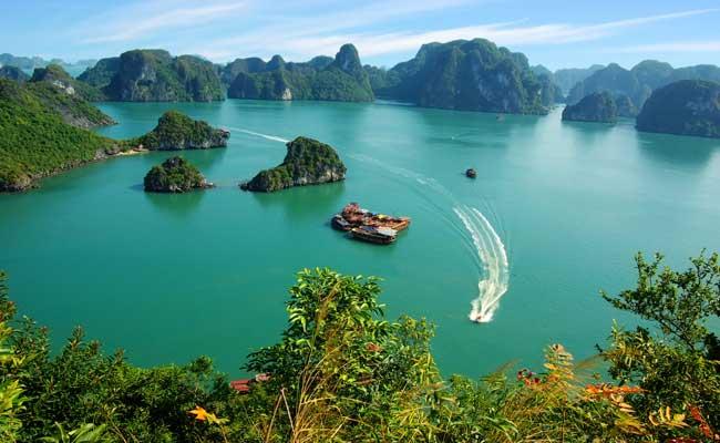 Photo de [Etude] les chiffres clefs de l'internet au Vietnam