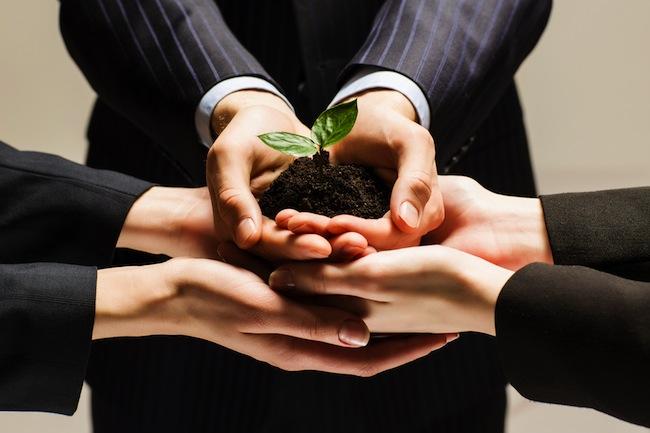 Photo de Investessor acquiert 10% de WeLikeStartup : «les business angels sont irremplaçables dans la chaîne de financement»