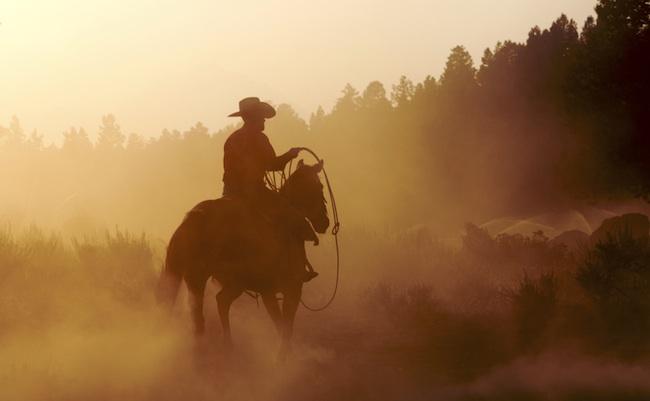 lasso-cowboy