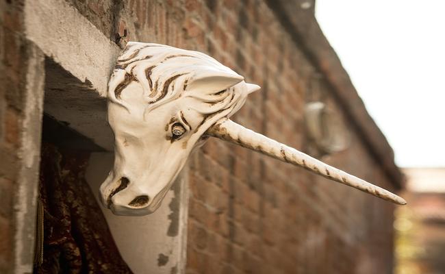 unicorn venice
