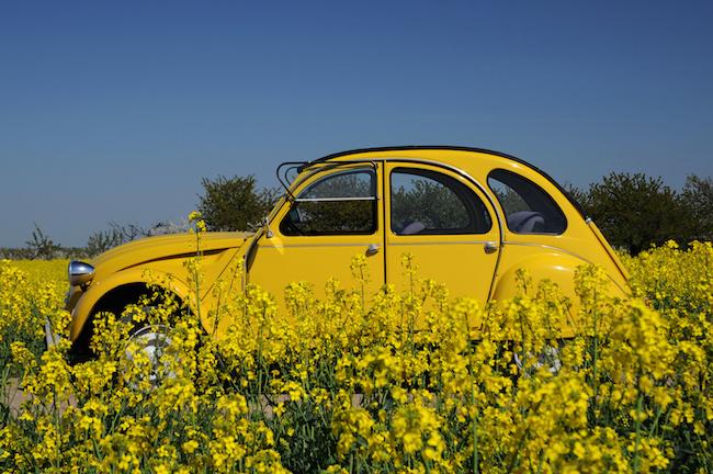 le secteur automobile cale sur les comp u00e9tences num u00e9riques