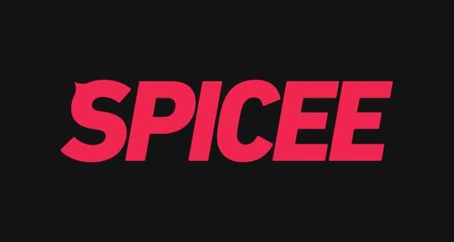 Photo de Alexandre Michelin prend la direction de Spicee et de ses vidéos «qui piquent»