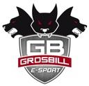 grosbill-esport