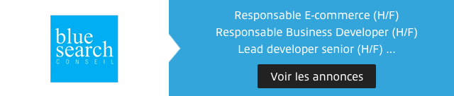 Blue Search Display Emploi