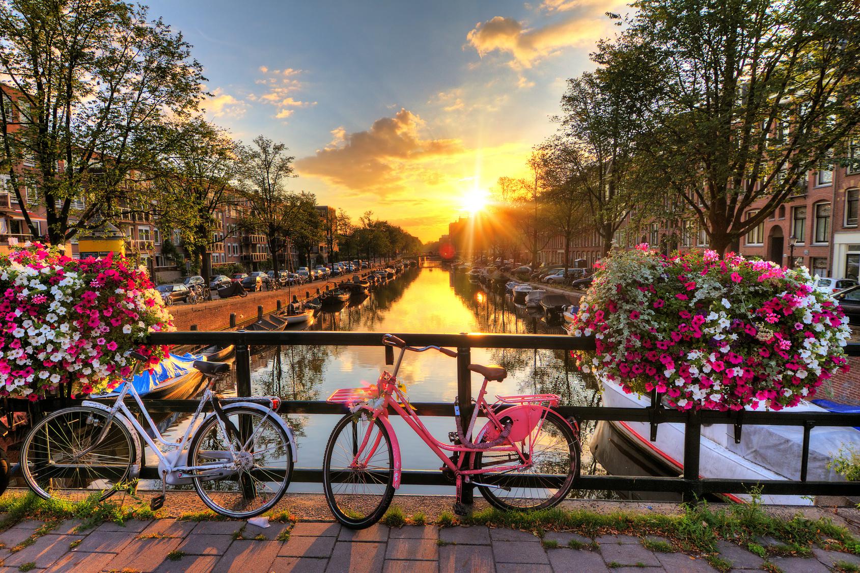 Photo de Le gouvernement néerlandais investit 20 millions d'euros dans l'e-santé