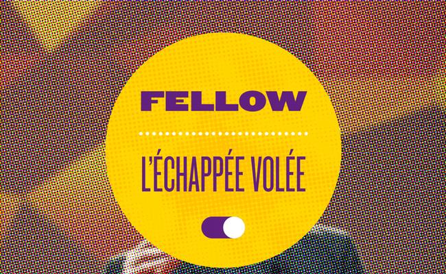 Photo de L'ÉCHAPPÉE VOLÉE 2017: l'appel à fellows