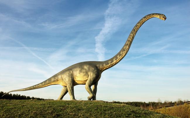 Photo de Les journalistes papier ne sont pas (tous) des dinosaures qui refusent d'évoluer