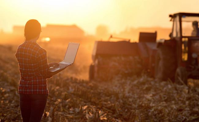 fermier-ordinateur