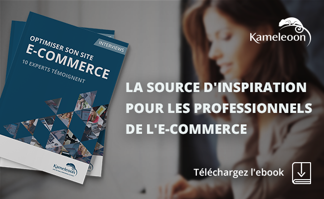 20170412_visuel_frenchweb_ebook_ecommerce