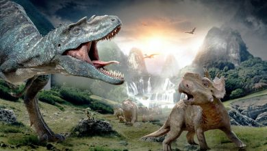 Photo de Je n'aimerais pas être un dinosaure de la pub…