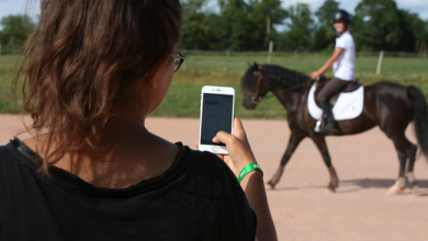 Photo de [FW Radar] Seaver, la sangle connectée pour améliorer vos performances à cheval