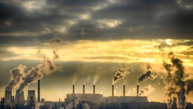 Photo de Change Management: comprendre la théorie de Kotter avec le réchauffement climatique