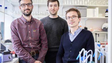 Photo de [INSIDERS] BioTech: la startup parisienne DNA Script ouvre une filiale aux États-Unis