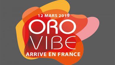 Photo de [ORO VIBE FRANCE] L'événement E-Commerce & CRM B2B