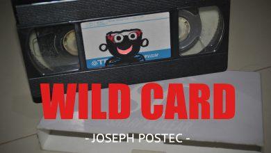 Photo de [WILD CARD] VHS : retour vers le futur !