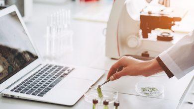 Photo de Keen Eye lève 6 millions d'euros pour accélérer dans l'analyse automatique des images biomédicales