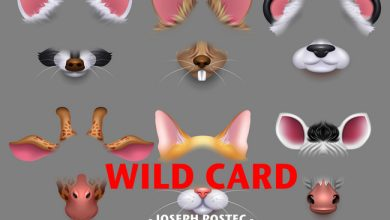 Photo de [WILD CARD] Le filtre ne fait pas le youtubeur…