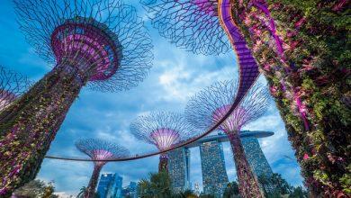 Photo de [NUMBERS] Quelles sont les 5 villes les mieux préparées à la révolution IA?