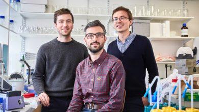 Photo de Comment la startup française DNA Script veut développer le stockage de données dans l'ADN