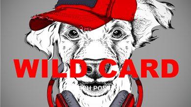 Photo de [WILD CARD] Les Royal Canin à écouter sur Spotify !