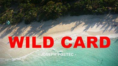 Photo de [WILD CARD] Porto Rico, l'île qui valait 2,6 millions de dollars !