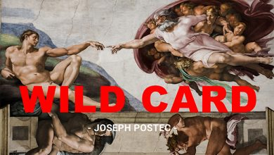 Photo de [WILD CARD] Le Vatican se connecte avec la Tech !