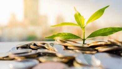 Photo de FinTech: comment les neobanques vertes veulent bousculer le secteur