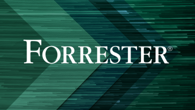 Photo de [Livre Blanc] Etude Forrester: comment un IDE optimise la productivité des développeurs