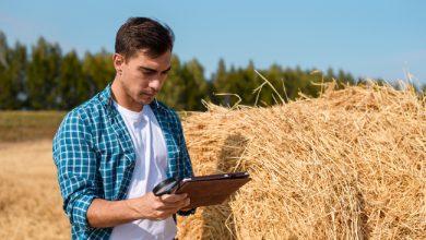 Photo de Qu'apporte l'e-commerce aux acteurs de la ruralité ?